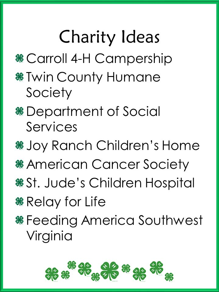 Charity Ideas Carroll 4-H Campership Twin County Humane Society