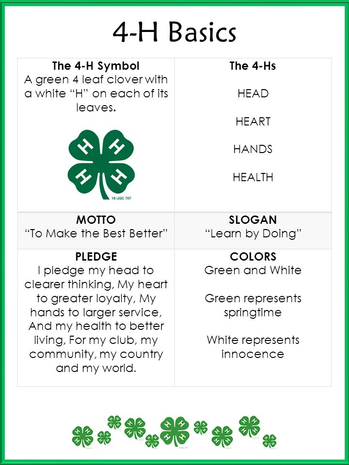 4-H Basics The 4-H Symbol. A green 4 leaf clover with a white H on each of its leaves. The 4-Hs.