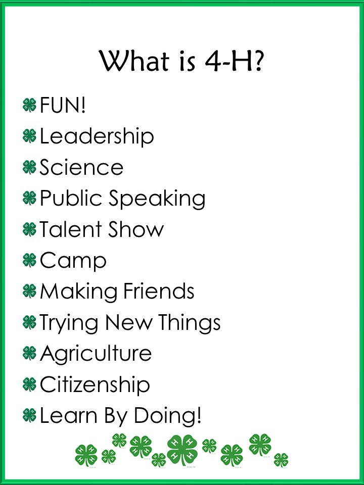 What is 4-H FUN! Leadership Science Public Speaking Talent Show Camp
