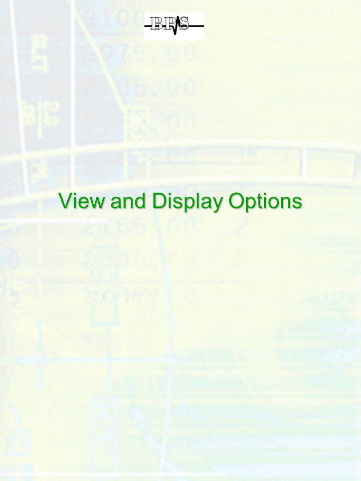 View and Display Options