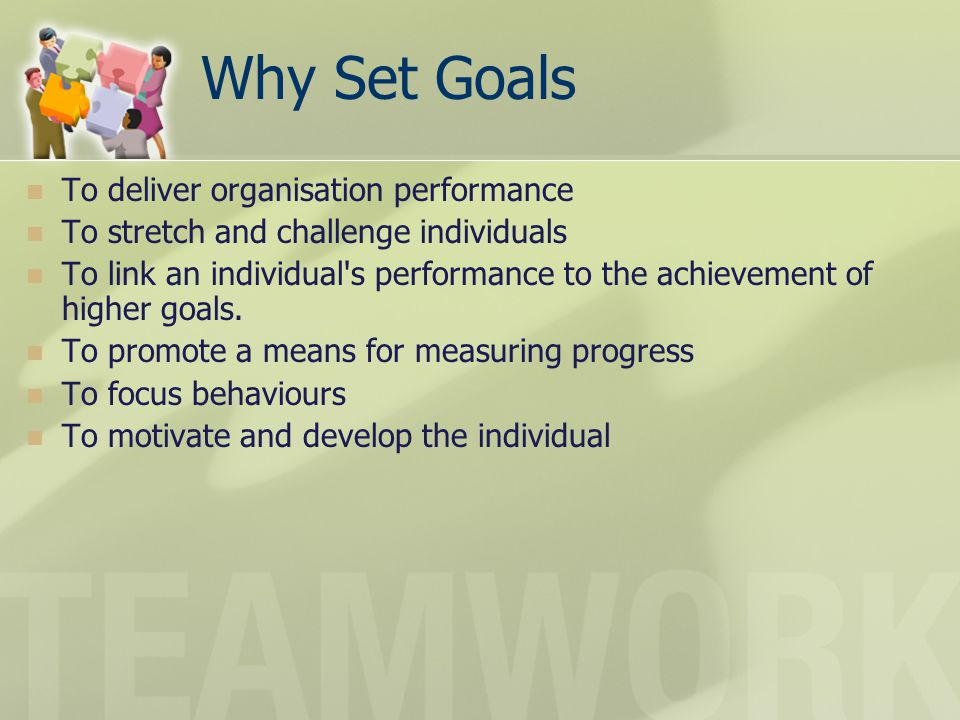 Why Set Goals To deliver organisation performance