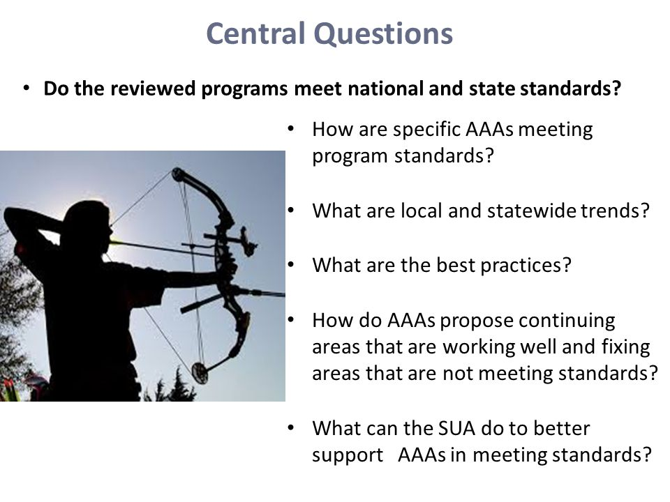 Central Questions Do the reviewed programs meet national and state standards How are specific AAAs meeting program standards
