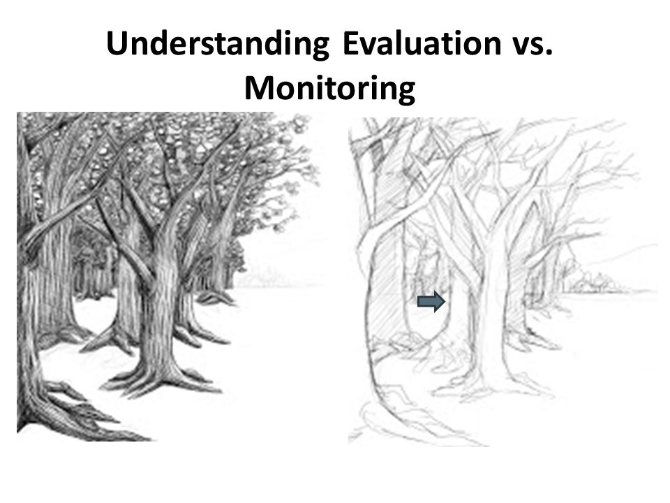 Understanding Evaluation vs. Monitoring