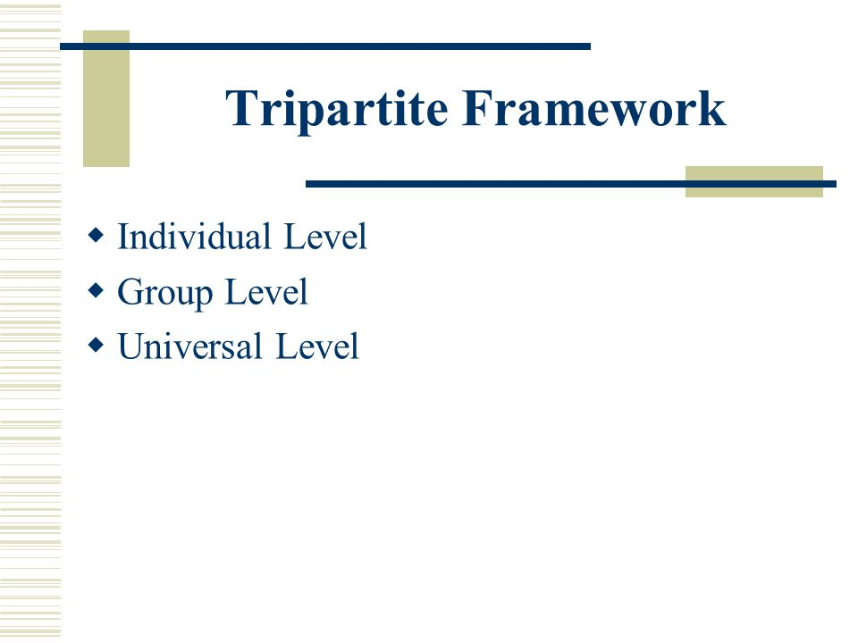 Tripartite Framework Individual Level Group Level Universal Level