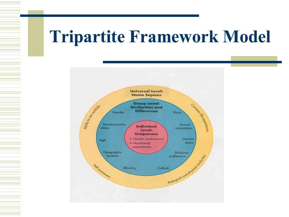 Tripartite Framework Model