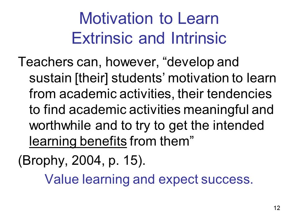 Motivation to Learn Extrinsic and Intrinsic