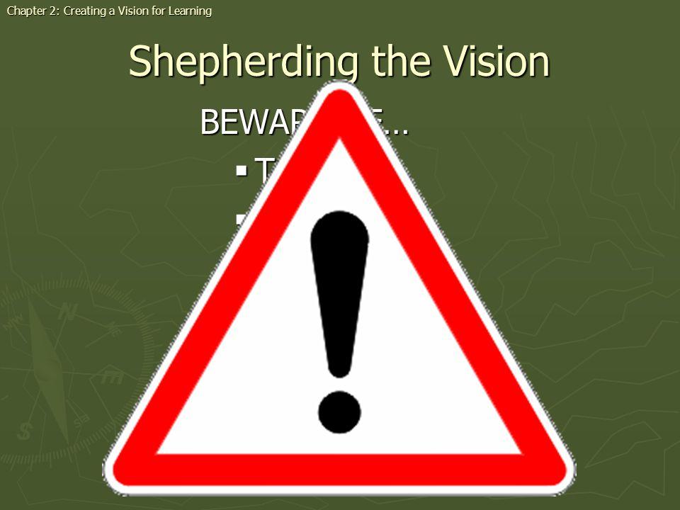 Shepherding the Vision