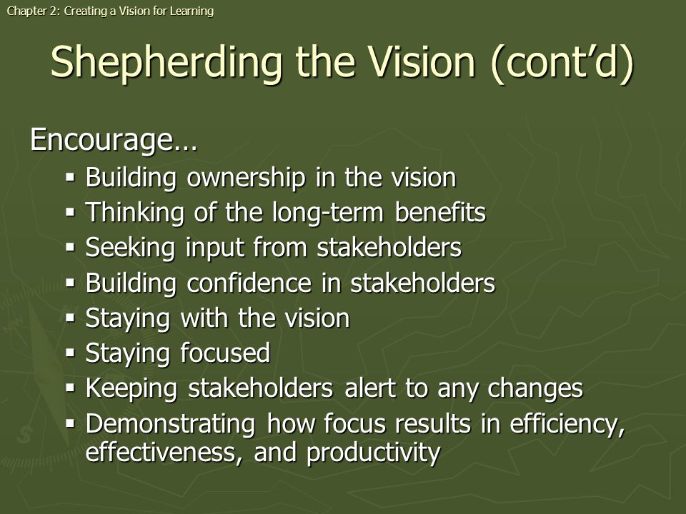 Shepherding the Vision (cont'd)