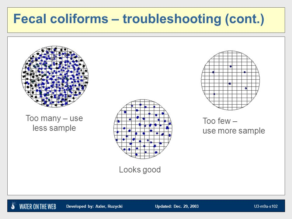 Fecal coliforms – troubleshooting (cont.)