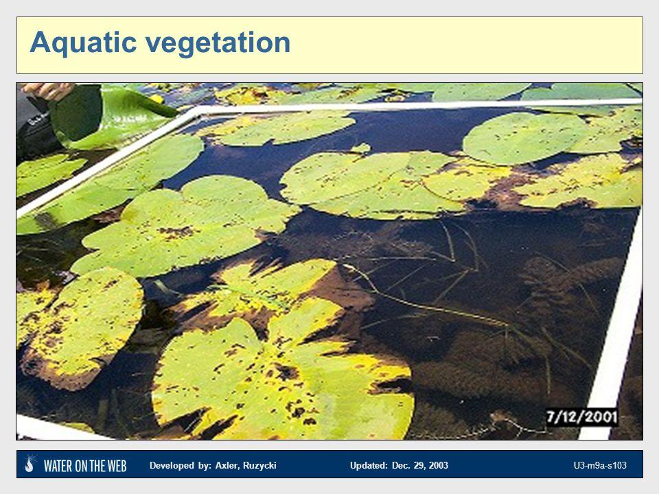 Aquatic vegetation Aquatic vegetation sampling is detailed in Module 8 Part C Lake sampling. References.