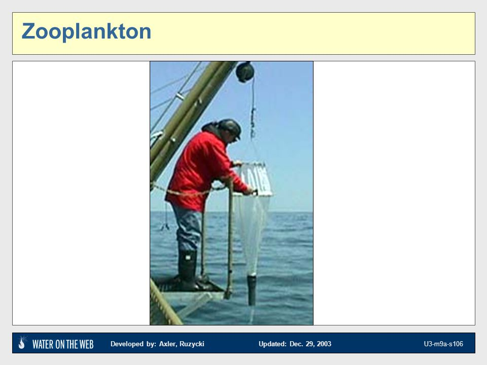 Zooplankton KEYS AND OTHER REFERENCES