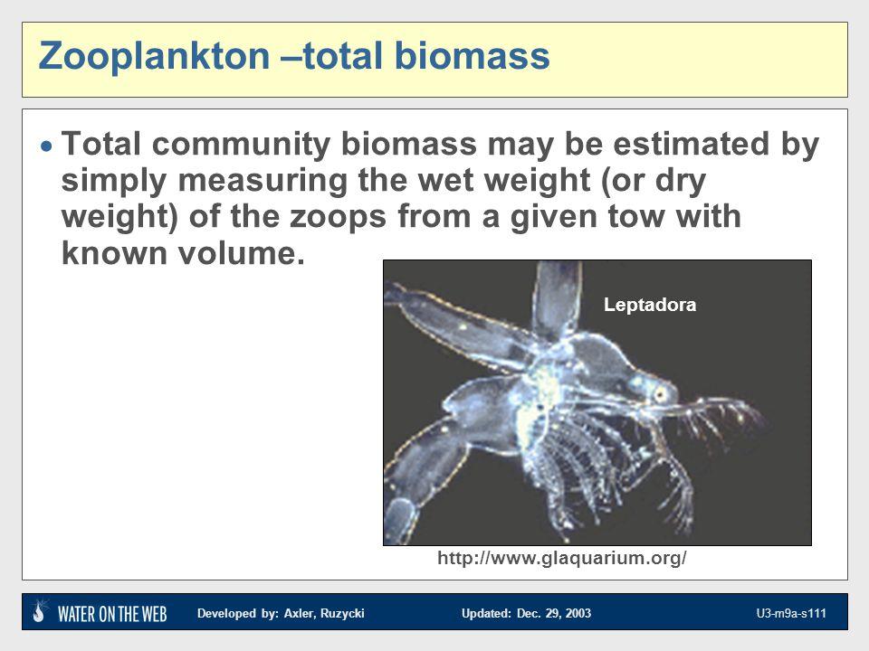 Zooplankton –total biomass
