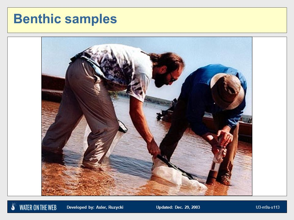 Benthic samples Photo from NRRI