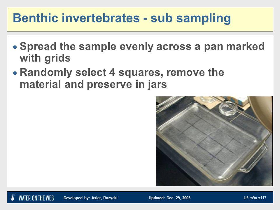 Benthic invertebrates - sub sampling