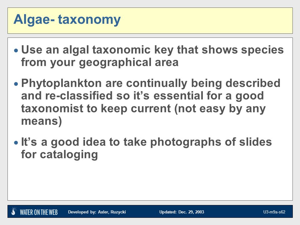 Algae- taxonomy Use an algal taxonomic key that shows species from your geographical area.