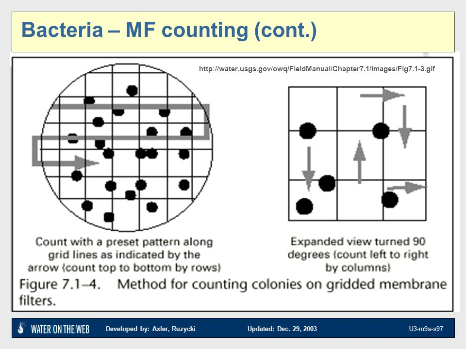 Bacteria – MF counting (cont.)