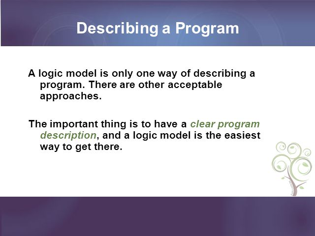 Describing a Program A logic model is only one way of describing a program. There are other acceptable approaches.