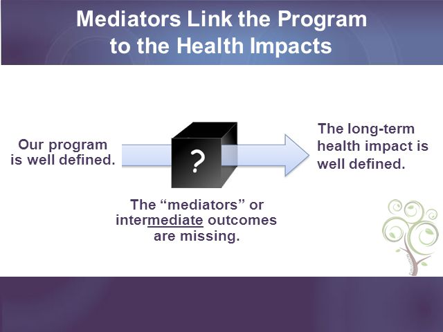 Mediators Link the Program to the Health Impacts