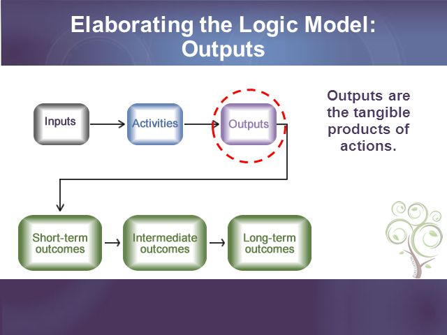 Elaborating the Logic Model: the tangible products of