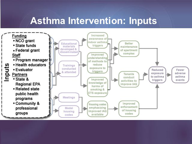 Asthma Intervention: Inputs