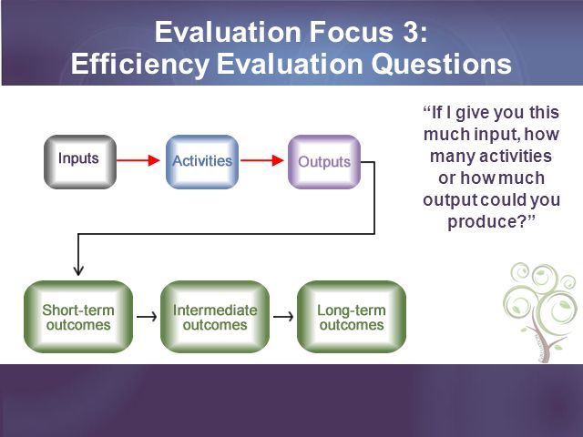 Efficiency Evaluation Questions