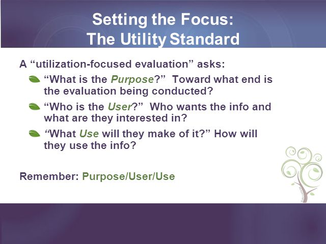 Setting the Focus: The Utility Standard