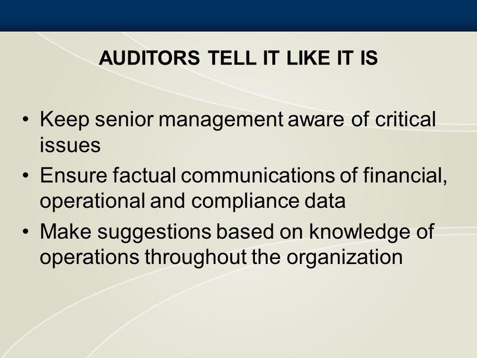 Auditors Tell It Like It Is