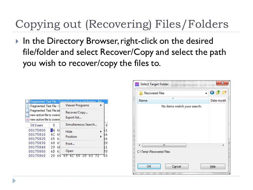 Copying out (Recovering) Files/Folders