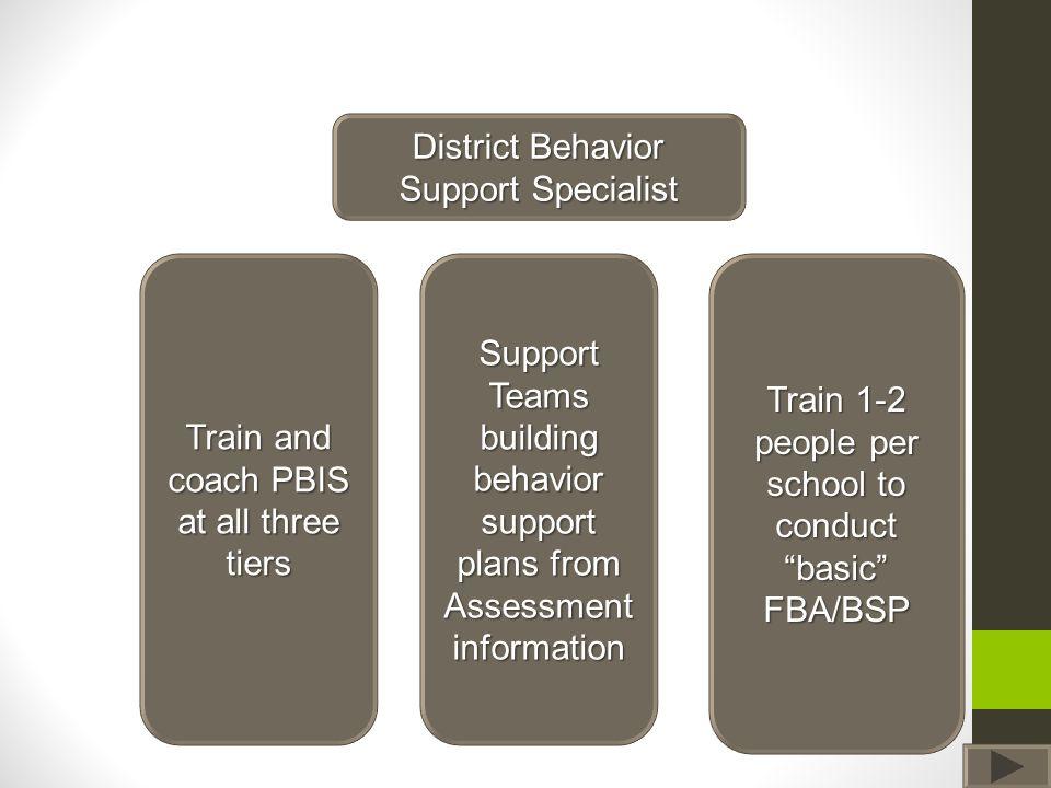 District Behavior Support Specialist