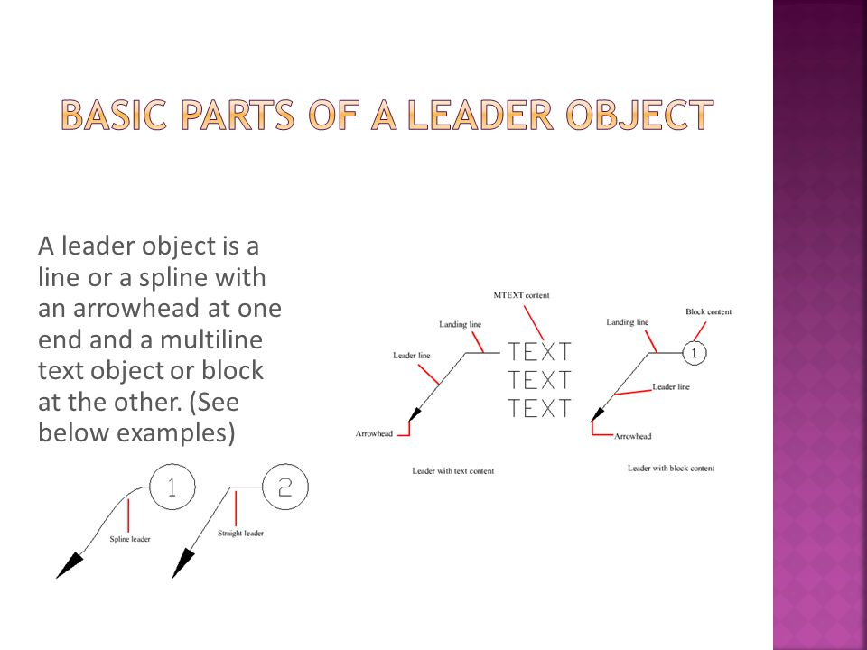 Basic Parts of a Leader Object