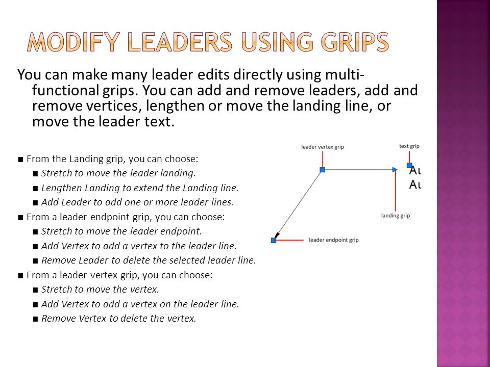Modify Leaders Using Grips