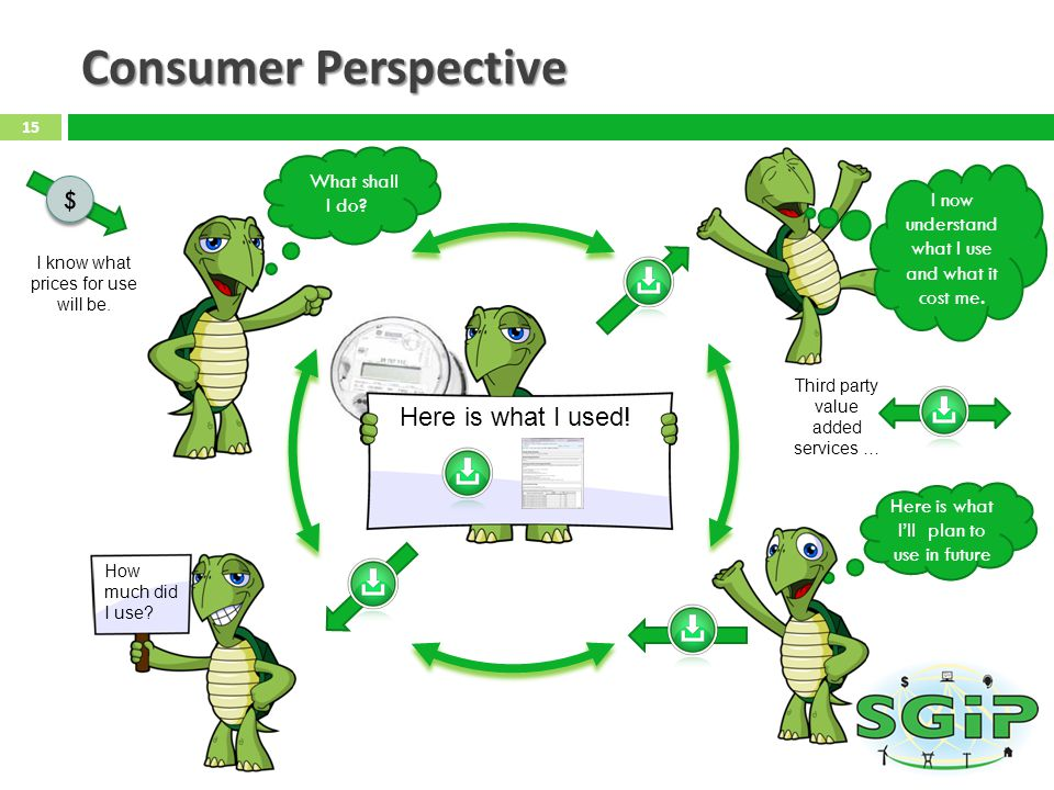 Consumer Perspective $ Here is what I used! What shall I do