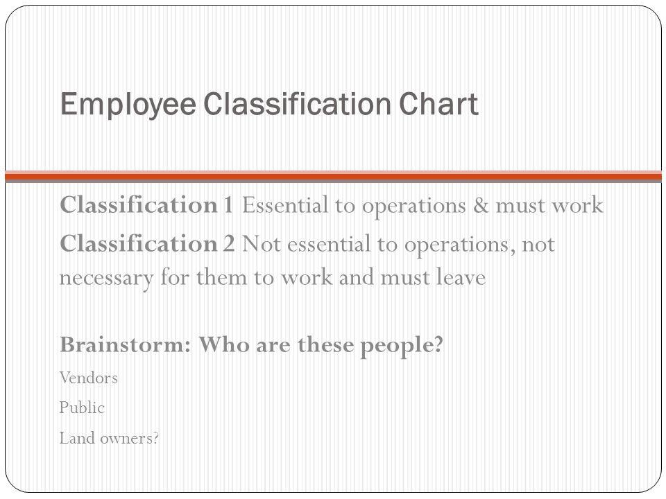 Employee Classification Chart