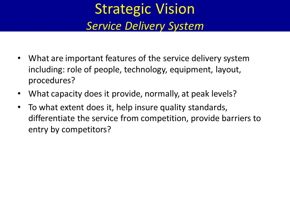 Strategic Vision Service Delivery System