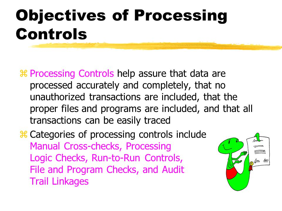 Objectives of Processing Controls