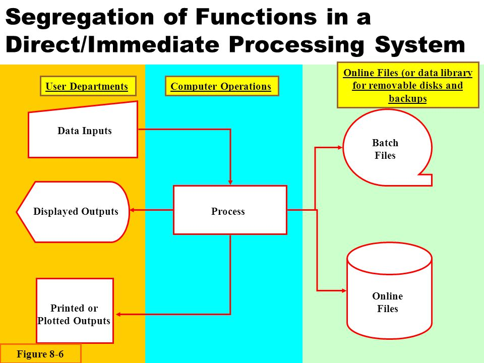 Segregation of Functions in a Direct/Immediate Processing System