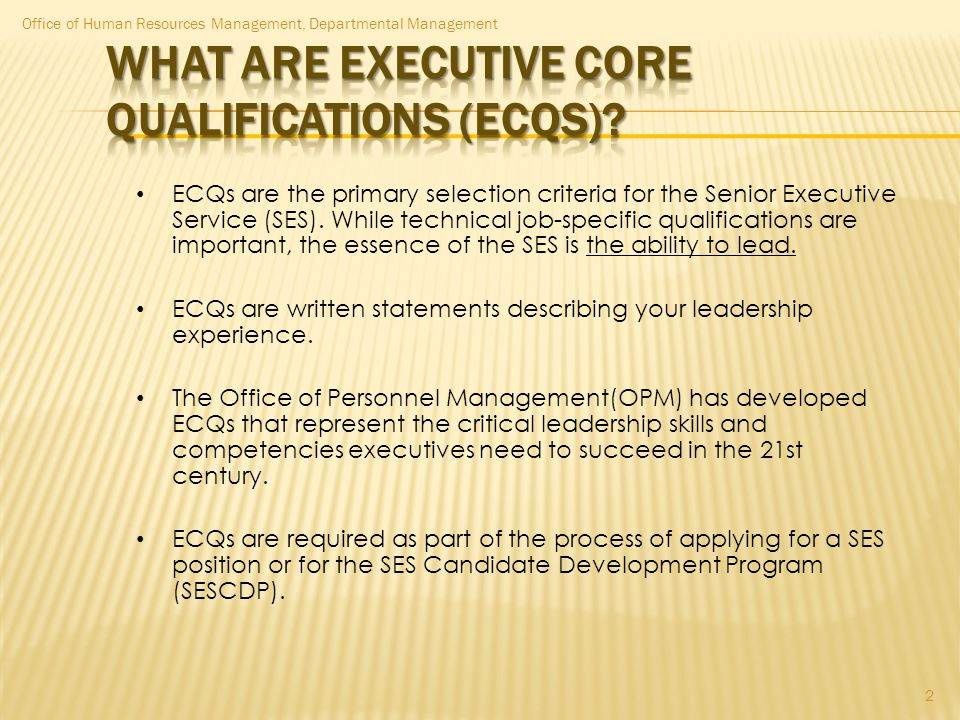 What are Executive Core Qualifications (ECQs)