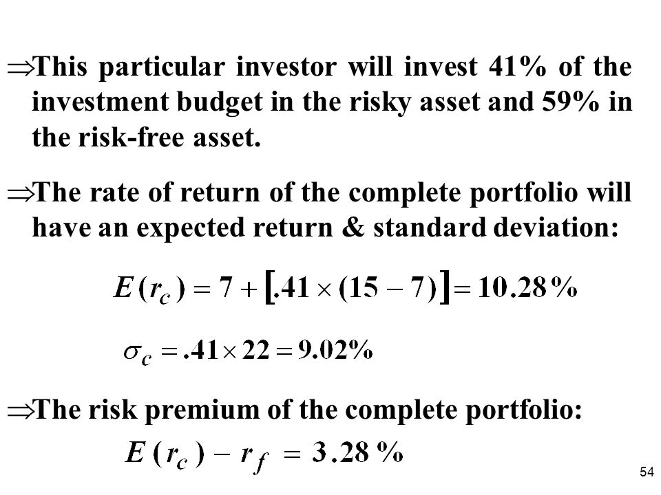 This particular investor will invest 41% of the investment budget in the risky asset and 59% in the risk-free asset.