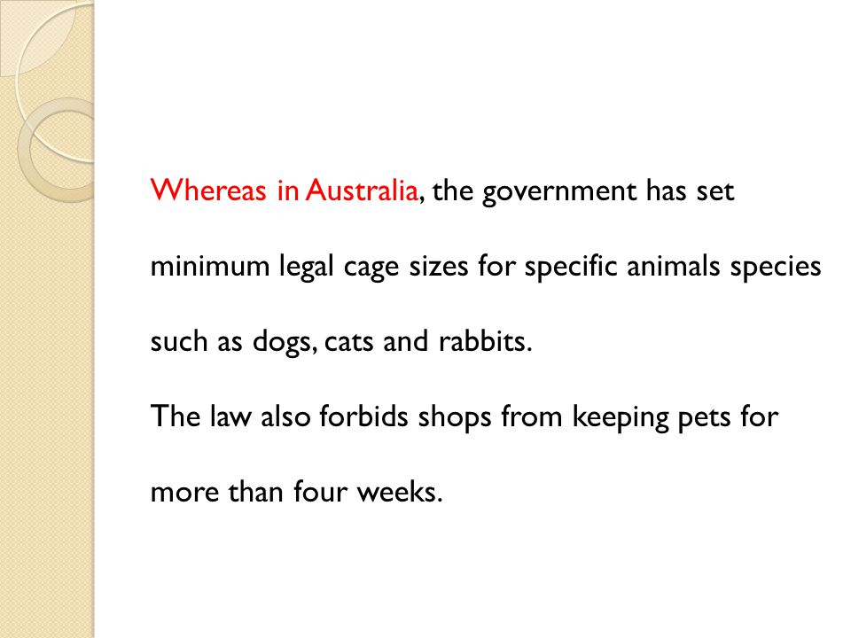 Whereas in Australia, the government has set minimum legal cage sizes for specific animals species such as dogs, cats and rabbits.