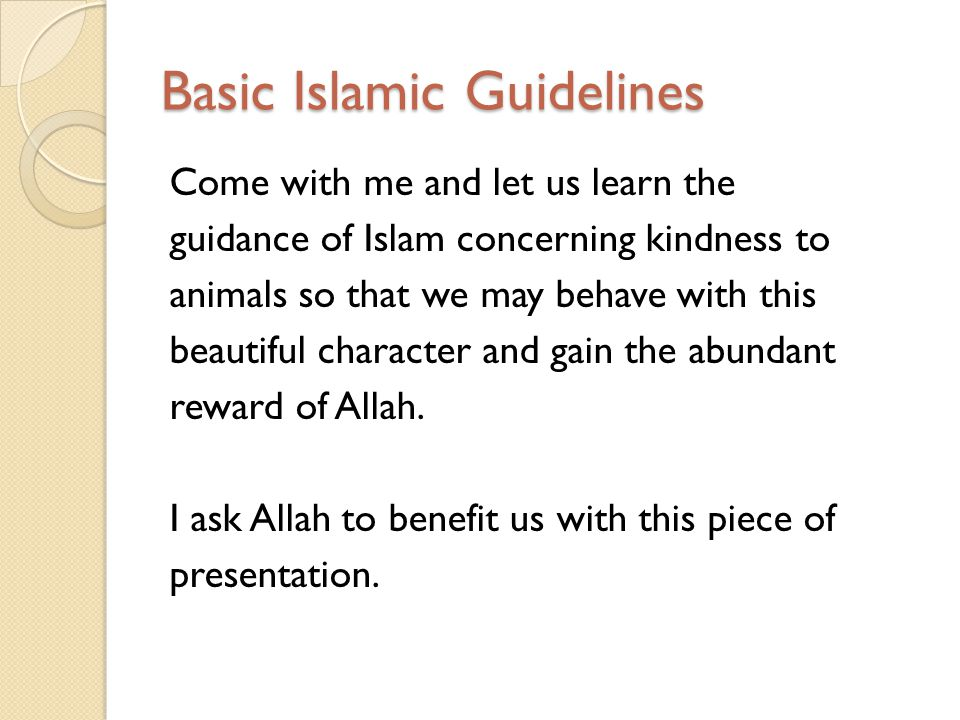 Basic Islamic Guidelines