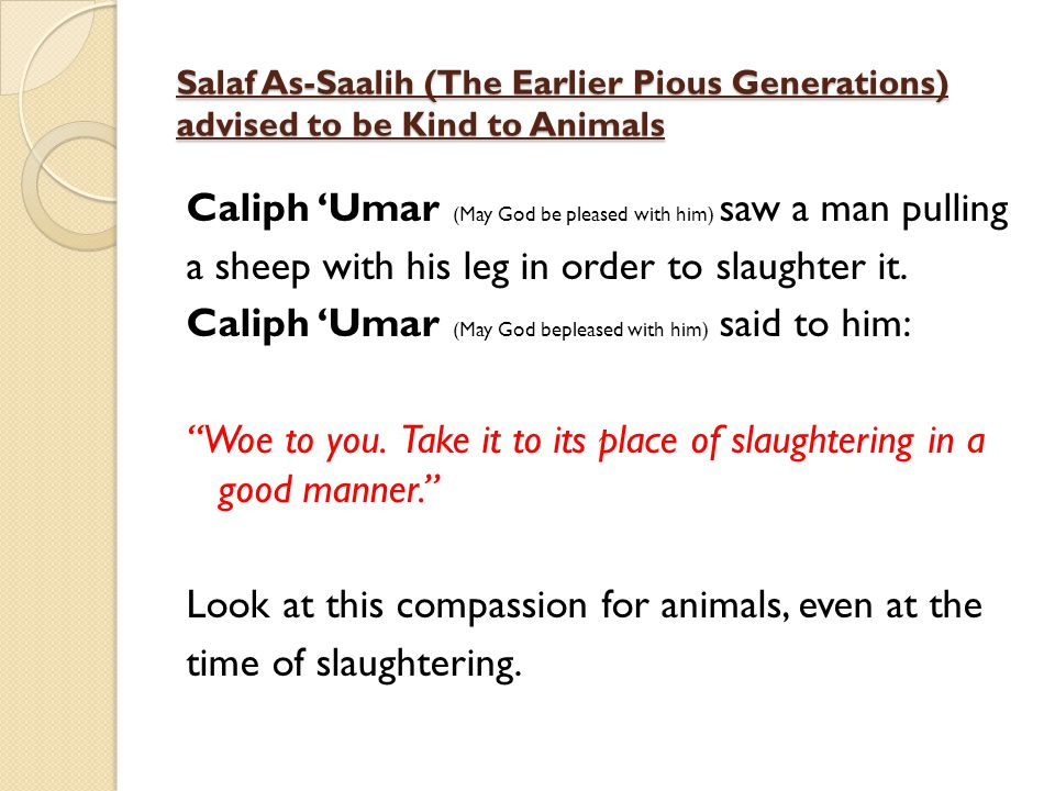 Salaf As-Saalih (The Earlier Pious Generations) advised to be Kind to Animals