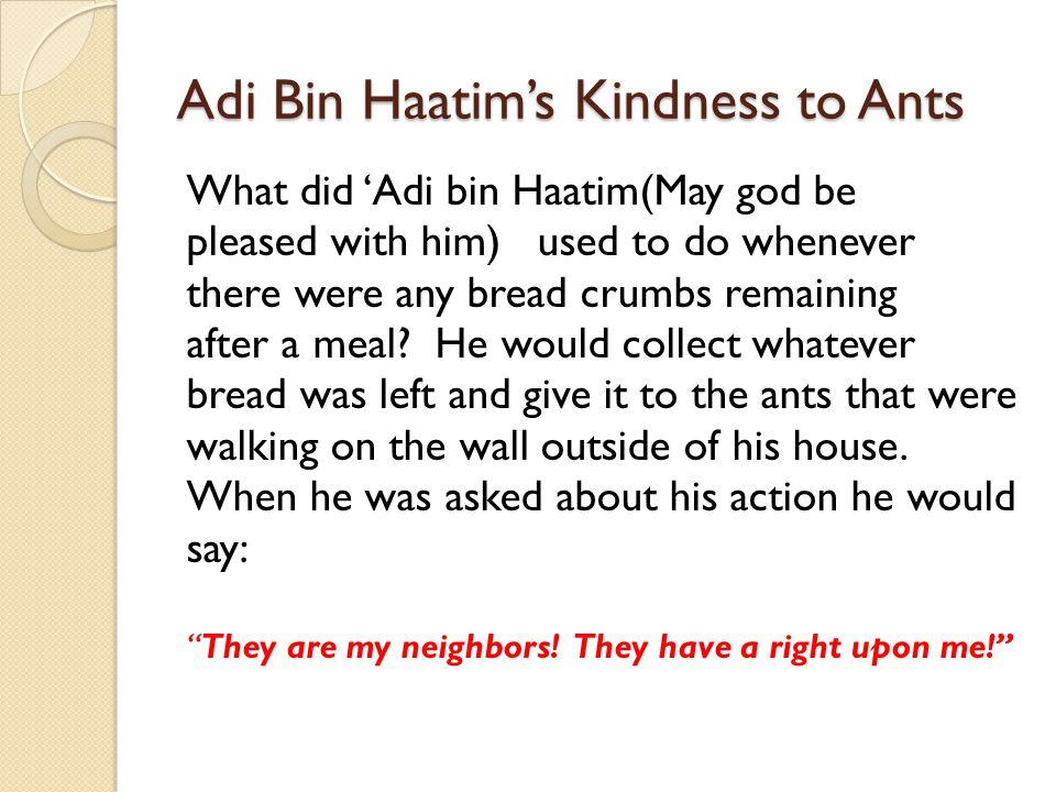 Adi Bin Haatim's Kindness to Ants