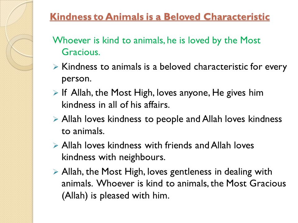 Kindness to Animals is a Beloved Characteristic