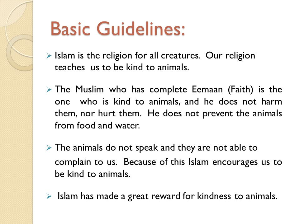 Basic Guidelines: Islam is the religion for all creatures. Our religion teaches us to be kind to animals.