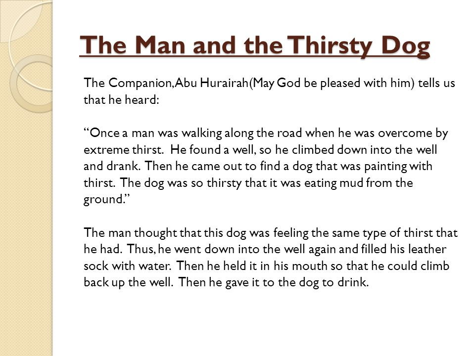 The Man and the Thirsty Dog
