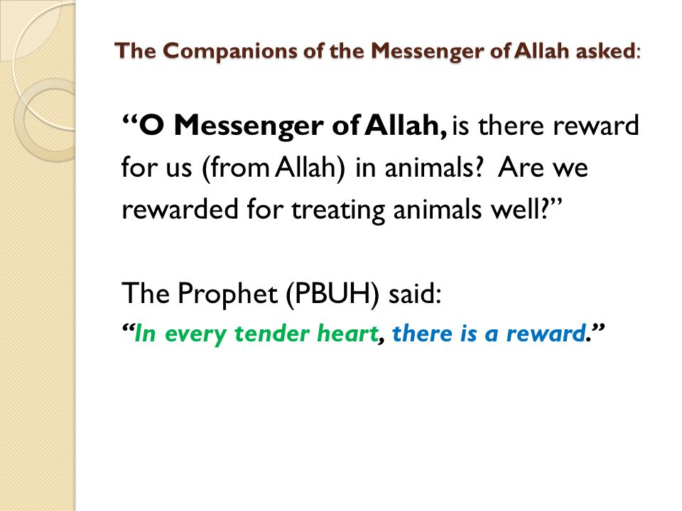 The Companions of the Messenger of Allah asked: