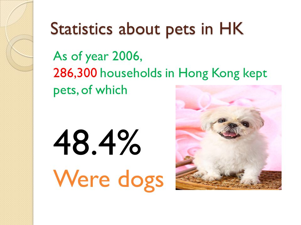 Statistics about pets in HK