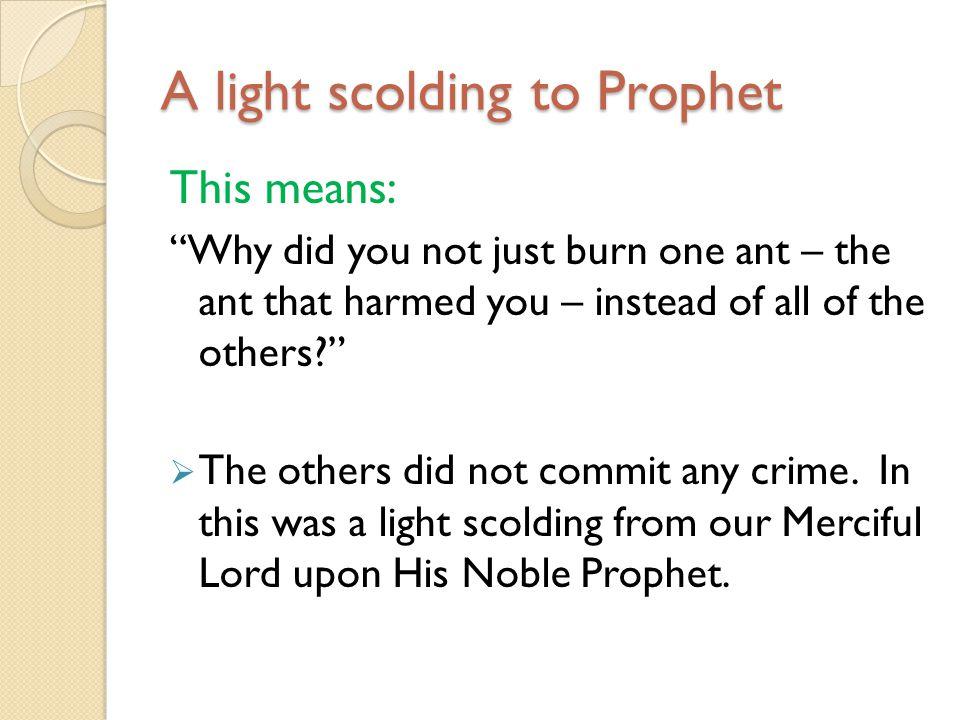 A light scolding to Prophet
