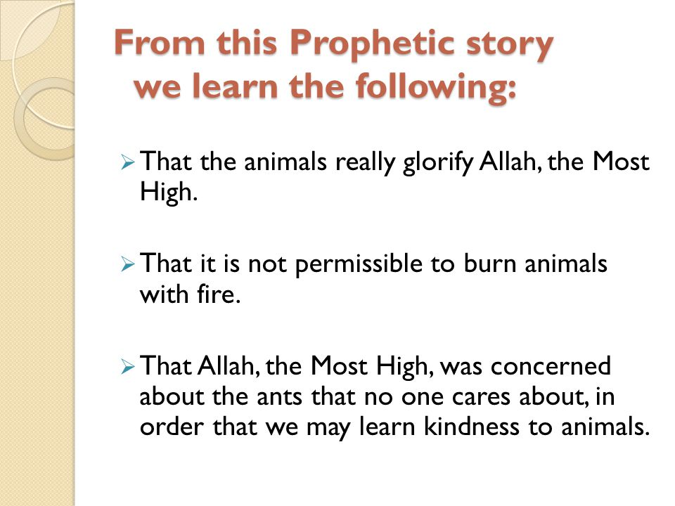 From this Prophetic story we learn the following: