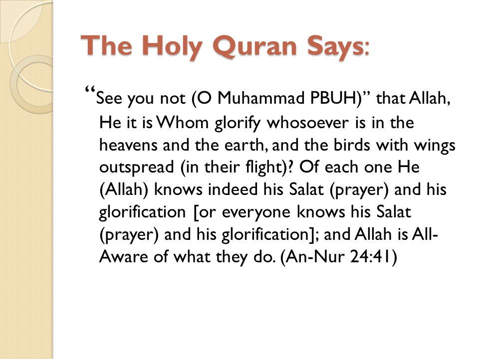 The Holy Quran Says: